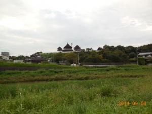 DSCN0718